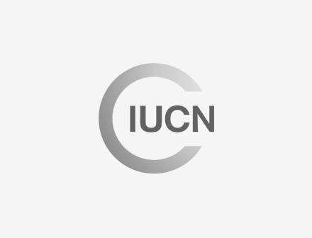 IUCN grey logo